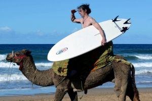 Essaouira Came Ride