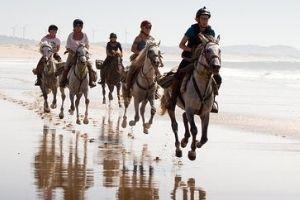 Horse Riding in Essaouira